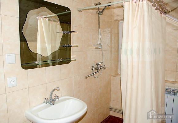 Apartment in Morshyn, Studio (80574), 005