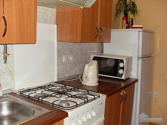 Apartment near the city garden, Un chambre (76009), 006
