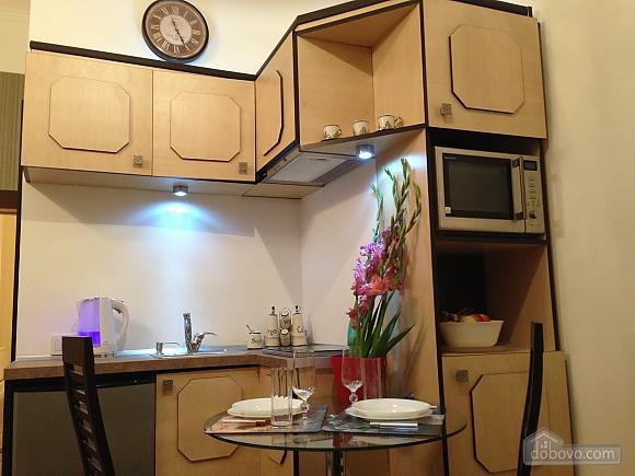 Apartment in Castle center of Lviv, Studio (55733), 003