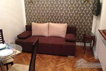 Apartment in Castle center of Lviv, Studio (55733), 001