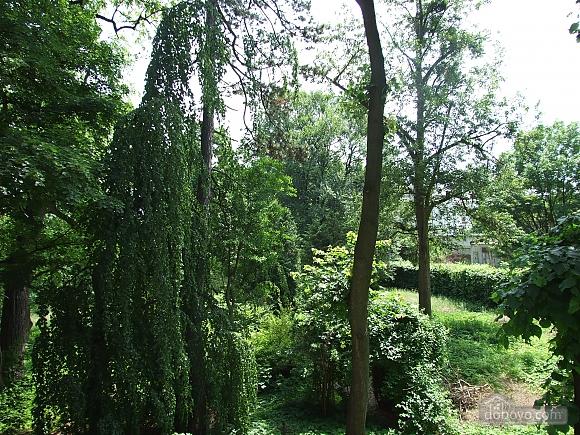 Apartments near the garden, Una Camera (60187), 010