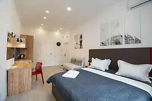 Light studio street view apartment with shower and sofa bed, Studio, 001