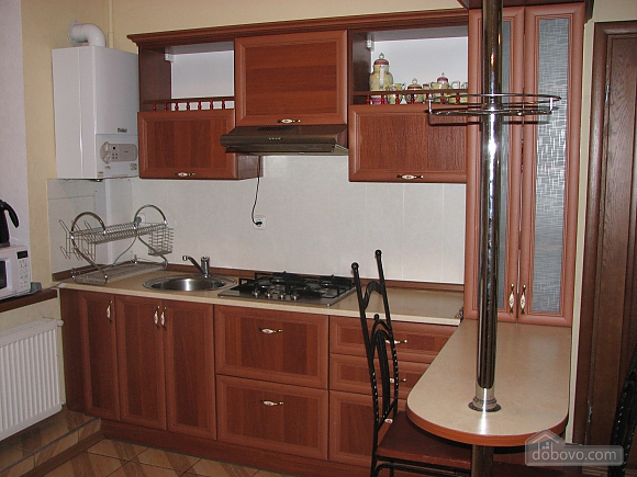 VIP apartment with kitchen in the private hotel in Gagarin park, Due Camere (66198), 006