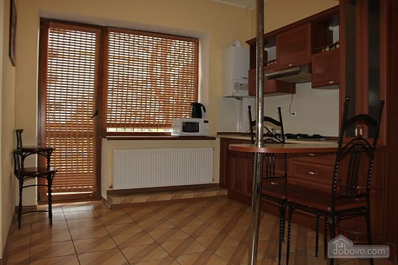 VIP apartment with kitchen in the private hotel in Gagarin park, Due Camere (66198), 007