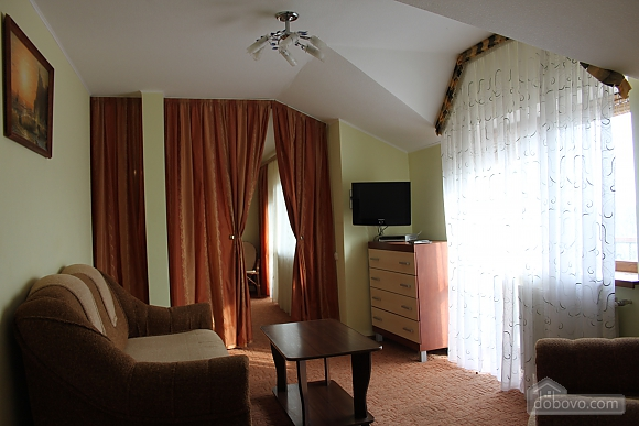 VIP apartment with kitchen in the private hotel in Gagarin park, Zweizimmerwohnung (48317), 003