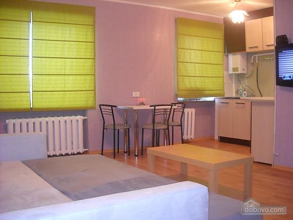 Хороша сучасна квартира, 1-кімнатна (18883), 001