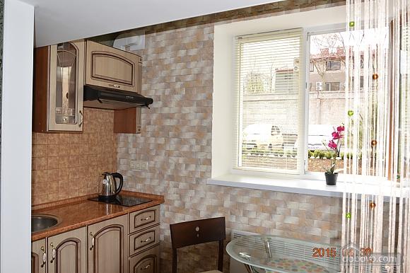 Quiet studio apartment Vctory park Arcadia, Monolocale (17484), 003