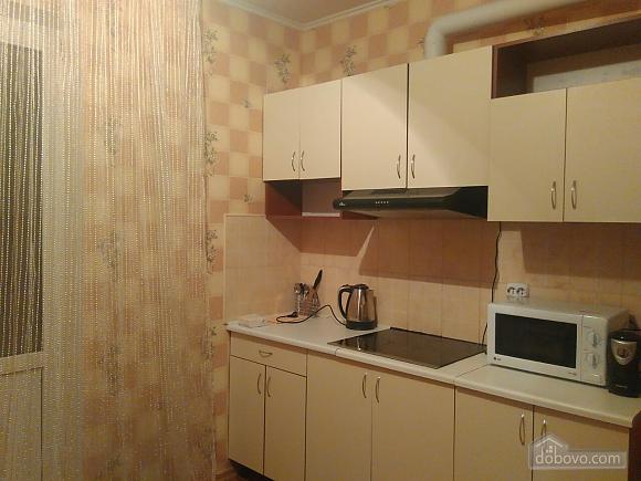 Neat apartment on Poznyaky, Studio (65697), 003