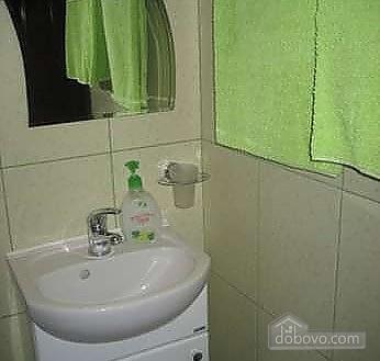 Затишна квартира з кондиціонером в центрі, 1-кімнатна (46157), 007