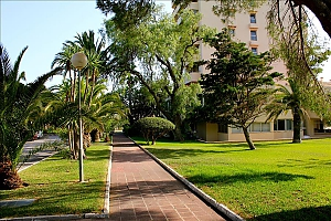 1st floor Marbella del Este, One Bedroom, 042