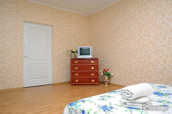 Spacious apartment, Monolocale (38046), 002