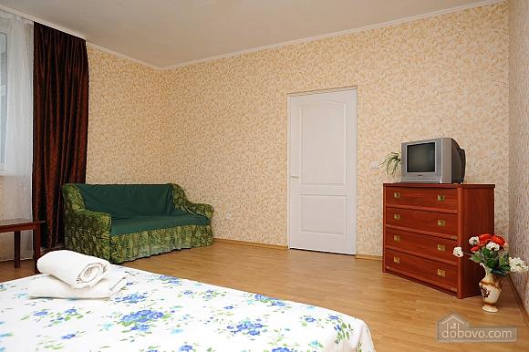 Spacious apartment, Monolocale (38046), 003