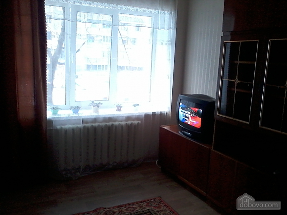 Clean apartment with Wi-Fi, Studio (15684), 008