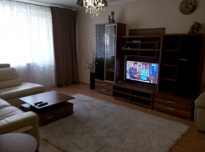 Cozy one-bedroom apartment for family rest, Zweizimmerwohnung, 003