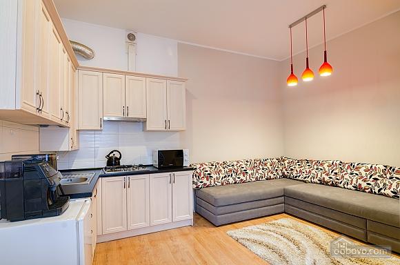Роскошная квартира в центре Львова, 2х-комнатная (72497), 015