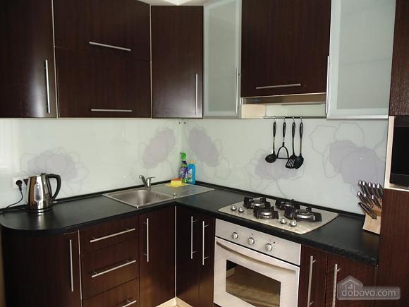 Затишна квартира недалеко від фонтану Рошен, 1-кімнатна (28962), 002