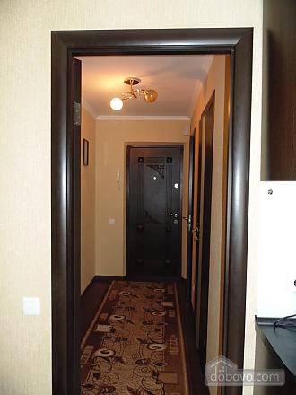 Затишна квартира недалеко від фонтану Рошен, 1-кімнатна (28962), 007