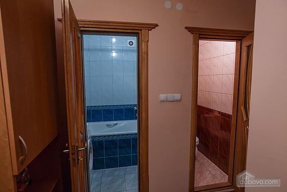 Apartment in the center, Monolocale (13902), 006