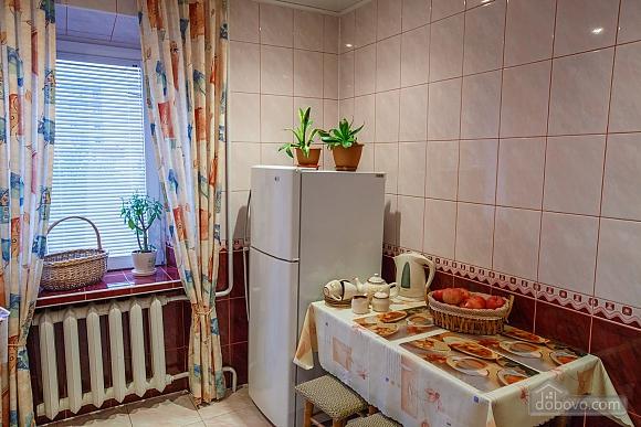 Apartment in the center, Monolocale (13902), 003