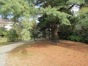 Il Casale nel Parco, Tre Camere, 047