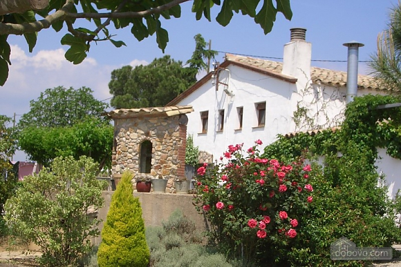 Holiday country house for rent in Riudarenes, Six (+) chambres (19272), 002