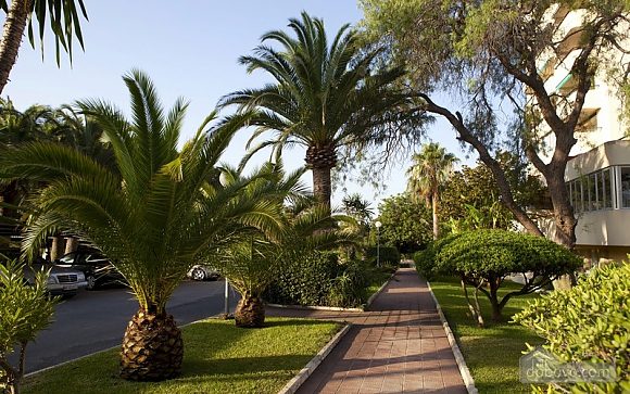Marbella Apartment 3 minutes to Nikki beach, Una Camera (62104), 017
