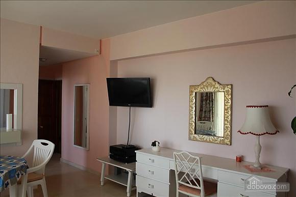 Marbella apartment in 3 minutes to Nikki beach, Monolocale (80053), 011
