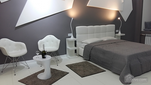 VIP studio in the center of Kiev with jacuzzi, Studio (41829), 010
