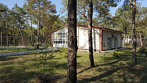 House by the sea in a pine forest, Dreizimmerwohnung, 004