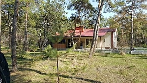 House by the sea in a pine forest, Due Camere, 003