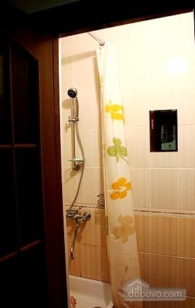 Apartment in the center, Studio (13621), 006