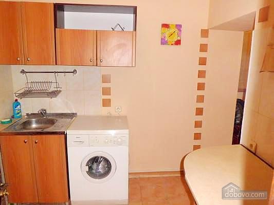 Apartment in the center, Studio (13621), 007
