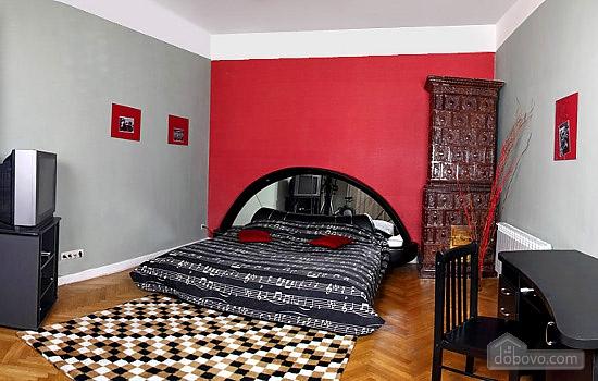 Квартира у центрі Львова, 2-кімнатна (55086), 001