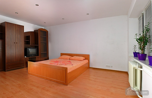 Apartment in Kiev, Studio (53568), 007