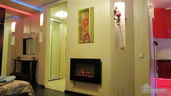 Квартира-студіо з дизайнерським ремонтом, 1-кімнатна (43100), 007