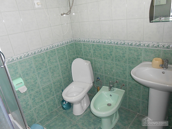 House in the Carpathians, Four Bedroom (62698), 006