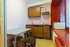 Apartment near metro Klovska, One Bedroom, 004