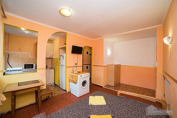 Apartment on Pechersk, Studio (16328), 004