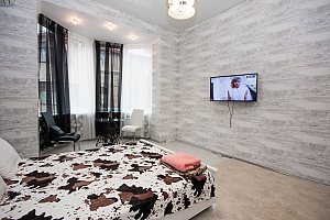 Apartment in the city center, Monolocale, 004