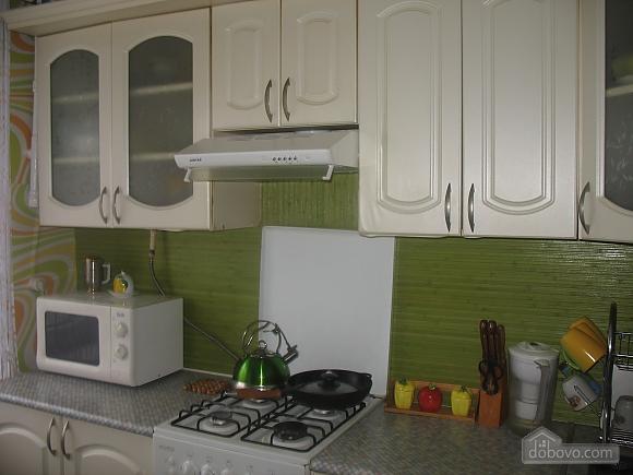 Бюджетная квартира на Отрадном, 2х-комнатная (96872), 004