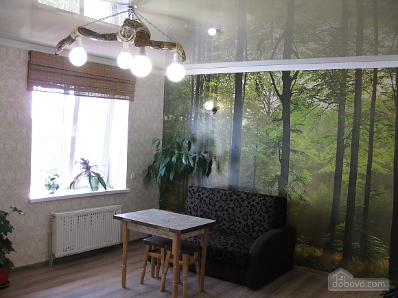 Cozy apartment with views of the monastery, Studio (13733), 006