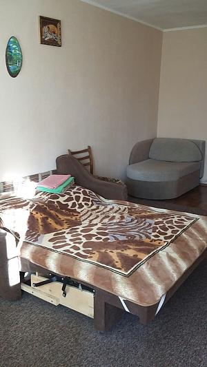 Cozy apartment in Kiev, Studio, 002
