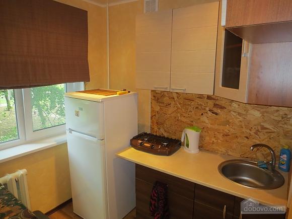 Apartment with renovation at Studentska metro station, Studio (86434), 015