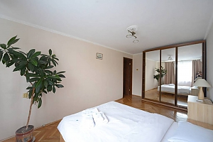 Pleasant quiet furnished apartment with unforgettable historic view in the center of Kiev, Zweizimmerwohnung, 001