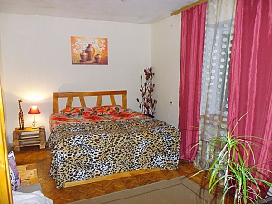 Apartment near Druzhby Narodiv metro station, Studio, 002