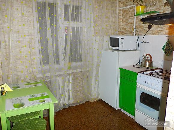Apartment near Druzhby Narodiv metro station, Studio (46539), 009