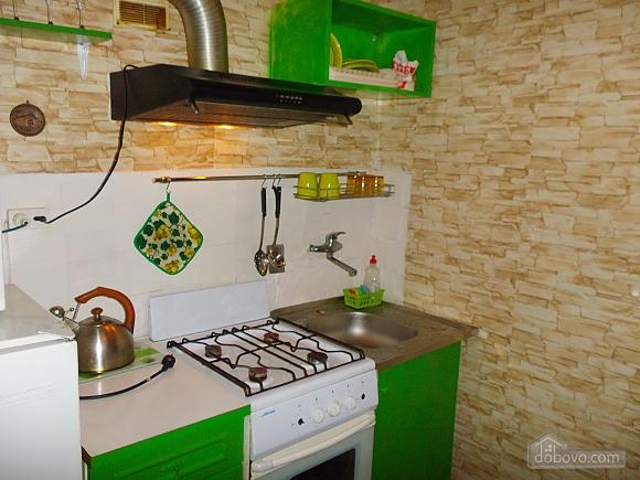 Apartment near Druzhby Narodiv metro station, Studio (46539), 011