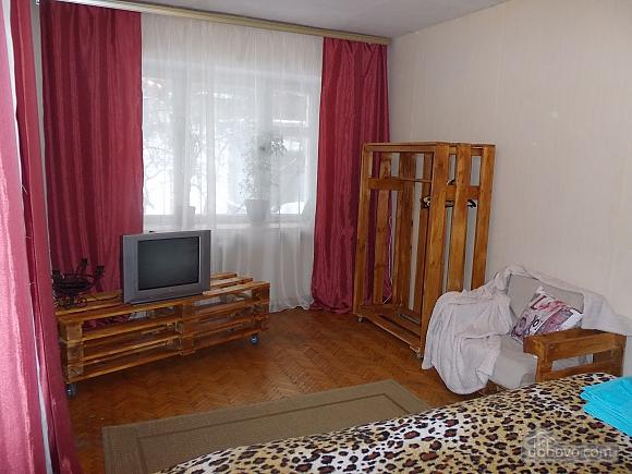 Apartment near Druzhby Narodiv metro station, Studio (46539), 005