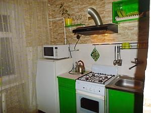 Apartment near Druzhby Narodiv metro station, Studio, 013