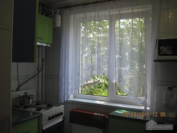 Квартира возле музея Коцюбинского, 2х-комнатная (63430), 017